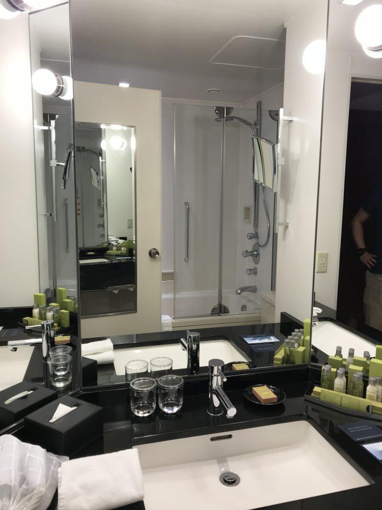 Hilton Tokyo-浴室