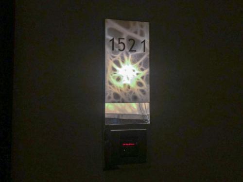 今次住15樓行政總監客房