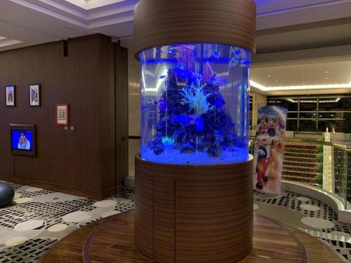 酒店大堂有圓柱形魚缸