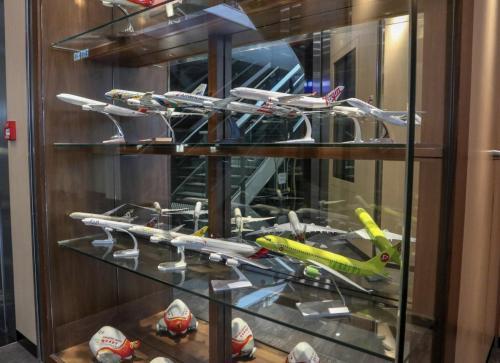 紫荊堂門外飛機模型櫃,入面都係有合作既航空公司